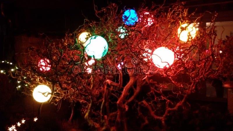 Свет в темноте стоковые изображения rf