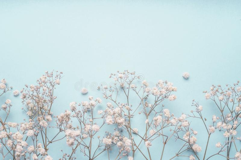 Свет - голубая флористическая граница предпосылки с белыми цветками гипсофилы Цветки s-дыхания ` младенца стоковая фотография