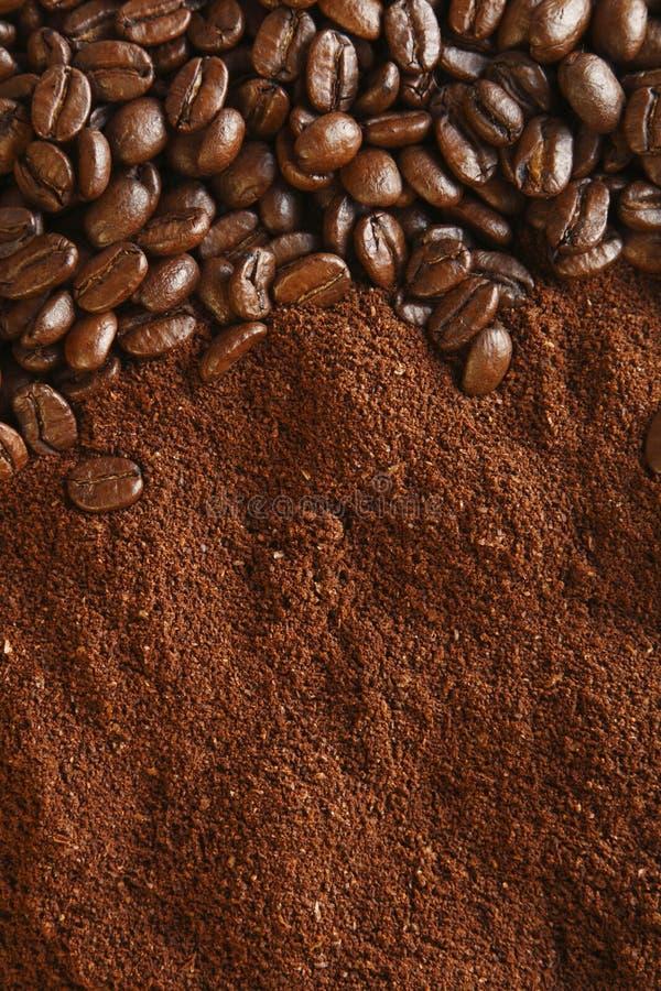свет земли кофе фасолей предпосылки теплый стоковые изображения rf