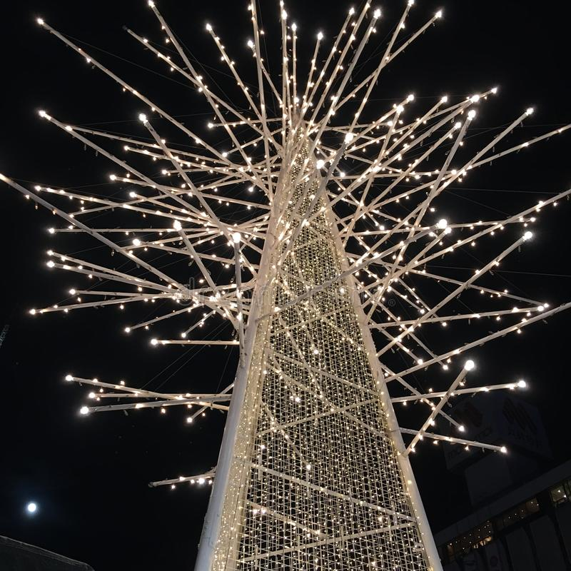 Свет ночи яркого блеска рождественской елки сверкная sparkly стоковое изображение