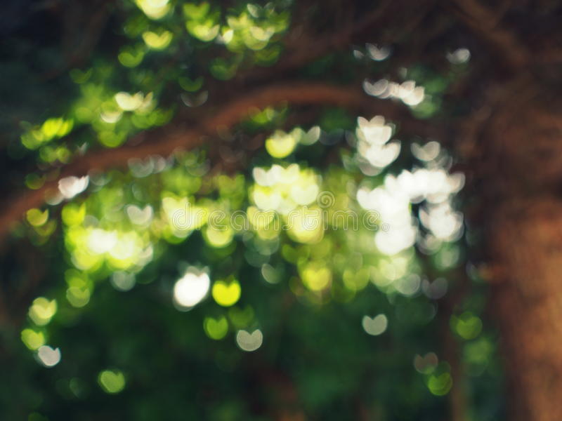 Светлое волшебство сердец стоковая фотография