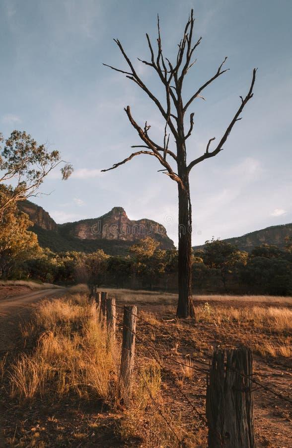 Свет после полудня в долине горы стоковое изображение rf