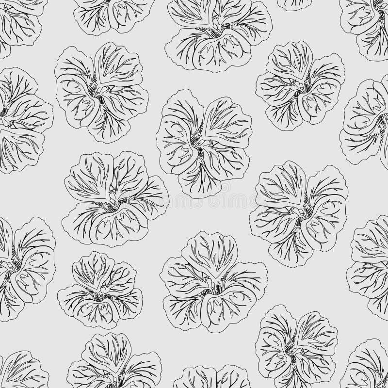 Свет - серая печать цветка гибискуса Шикарная настурция loral картина ультрамодное предпосылки безшовное вектор текстуры шаблона  иллюстрация штока