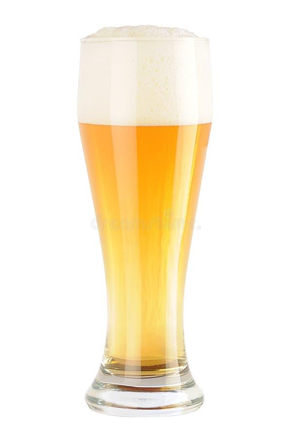 свет стекла пива стоковые изображения rf