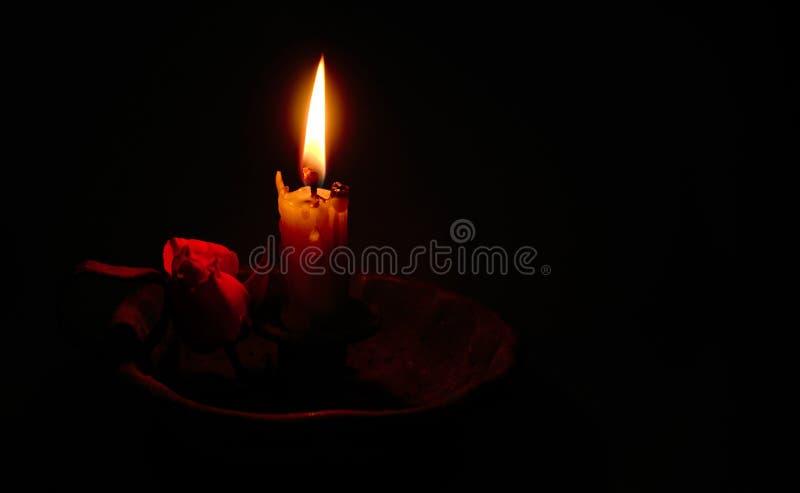 Свеча нежно освещая красную розу стоковые фотографии rf