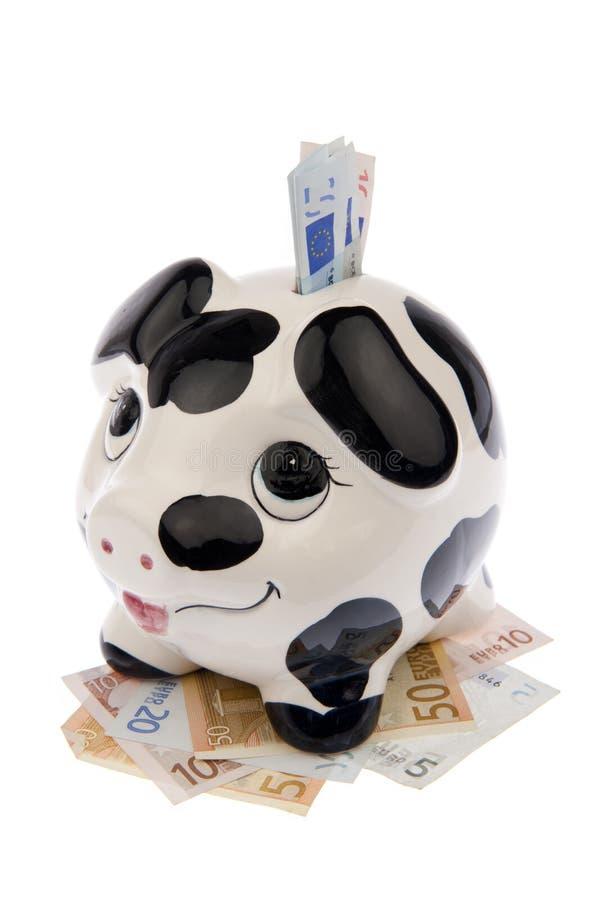 Свинья в кровати кредиток и в шлице вышла стоковое изображение rf