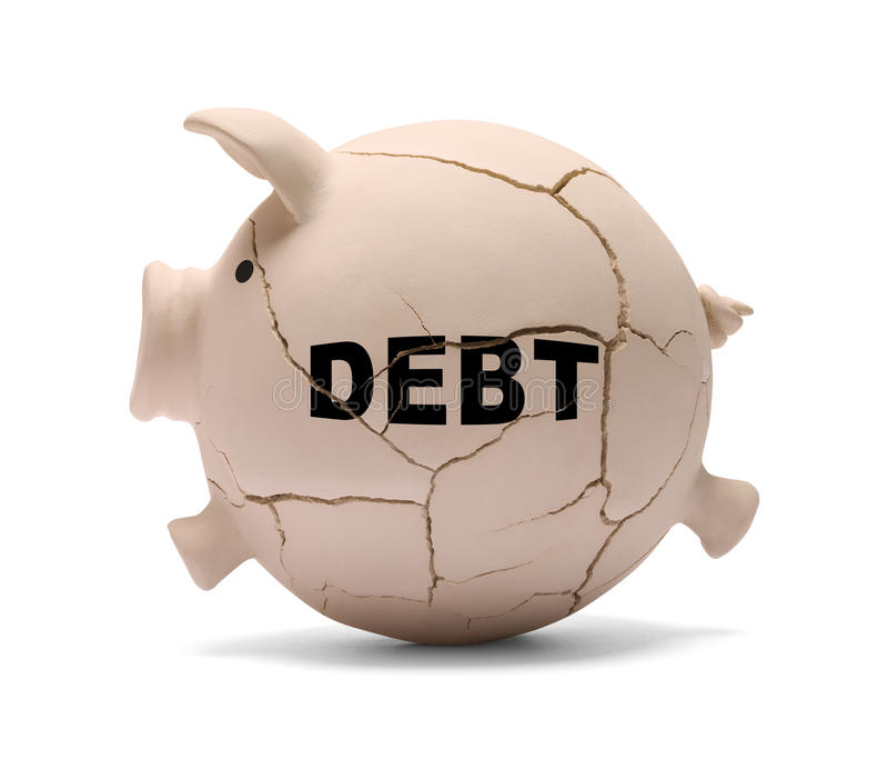 Свинья задолженности стоковая фотография