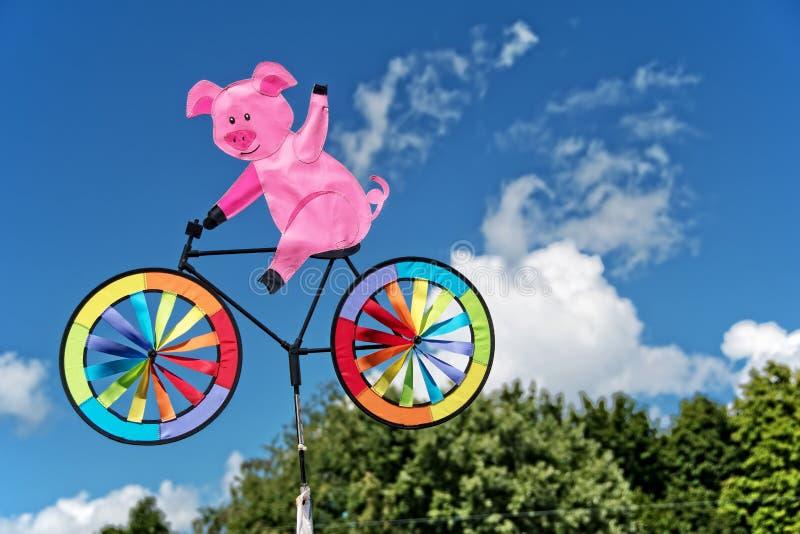 Свинья на pinwheel велосипеда стоковое изображение