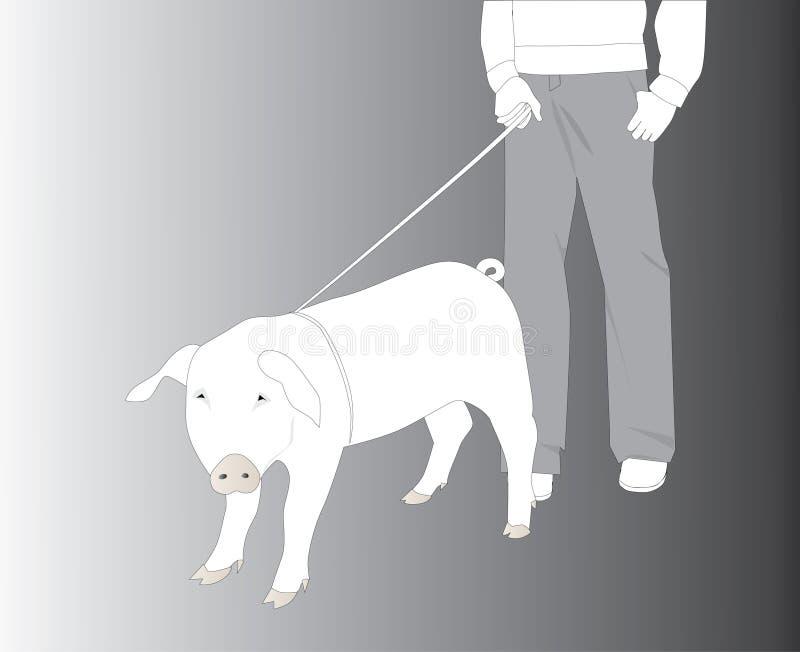 свинья поводка бесплатная иллюстрация