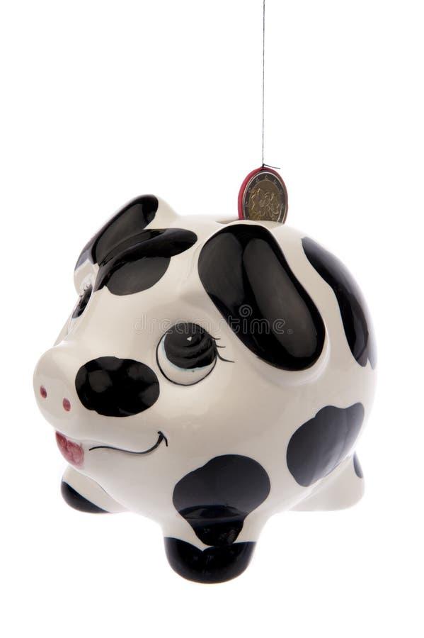 Свинья с монеткой евро в стороне шлица левой стоковое изображение rf