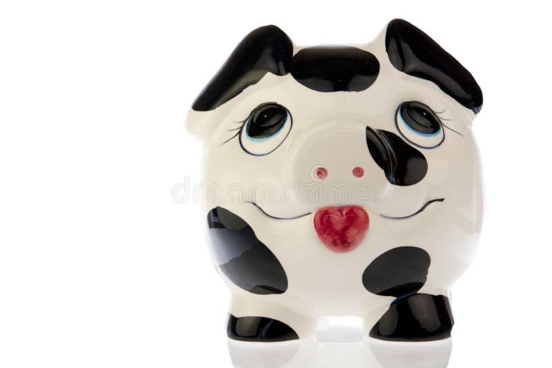 Свинья с счастливой стороной в белизне стоковая фотография rf