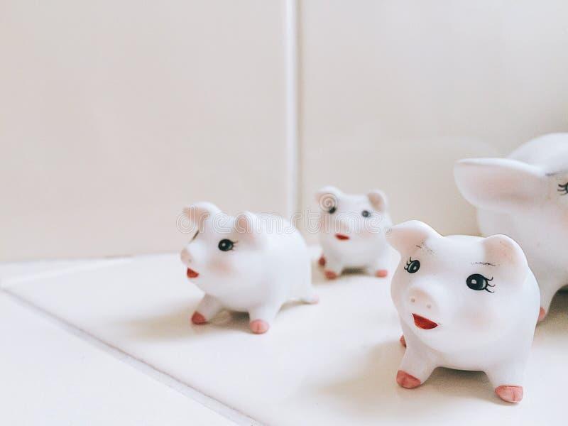 Свинья улыбки стоковые изображения