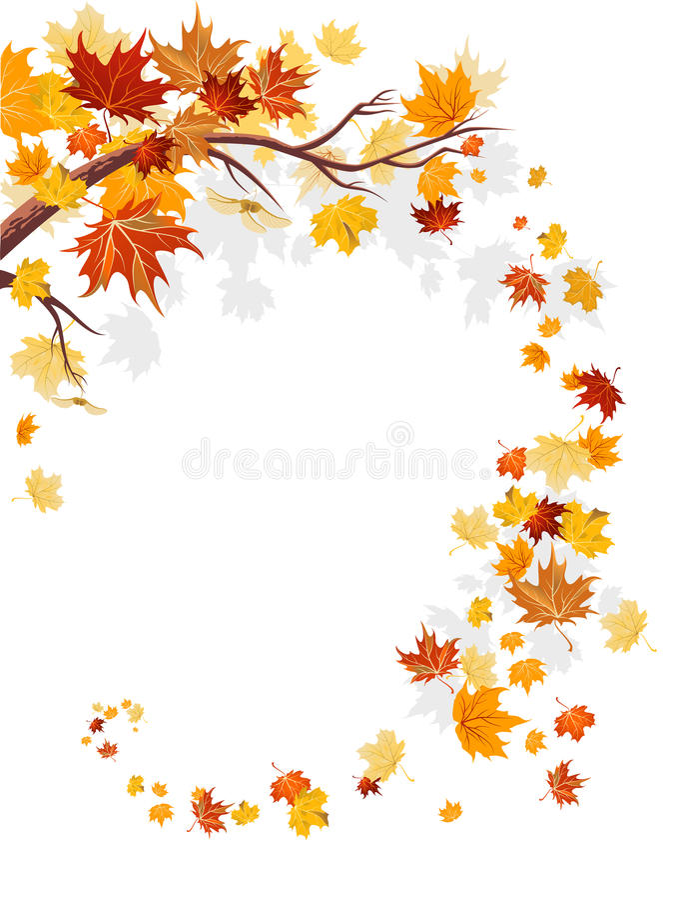 свирль клена листьев иллюстрация вектора