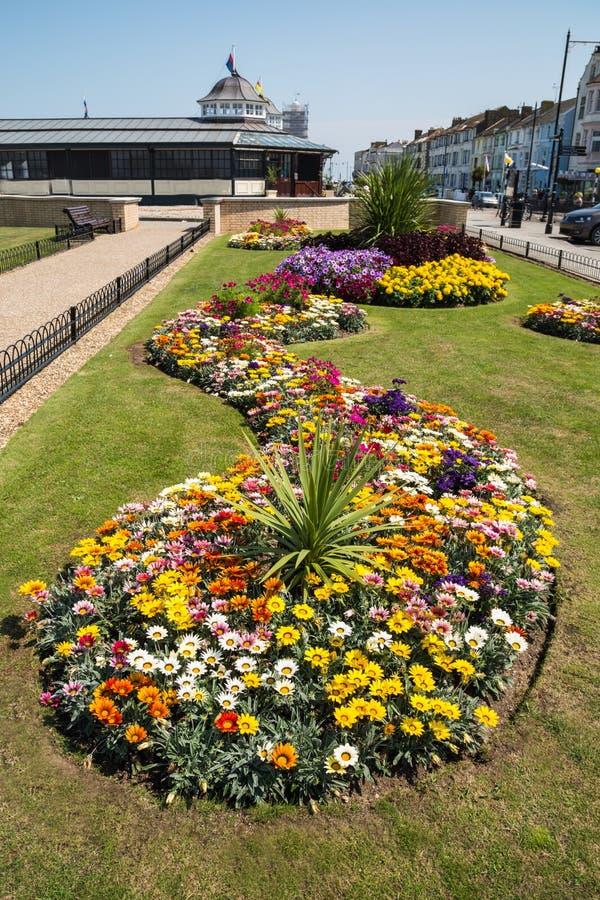 Свирль милого flowerbed в заливе Herne, Кенте, Великобритании стоковые изображения rf
