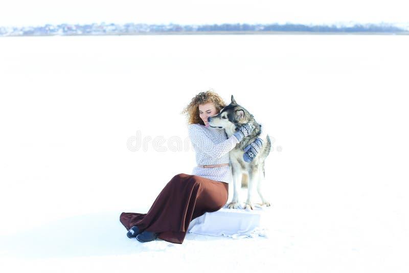 Свитер женщины нося, коричневая юбка и mittens сидя на снеге и обнимая лайку собаки стоковое изображение rf