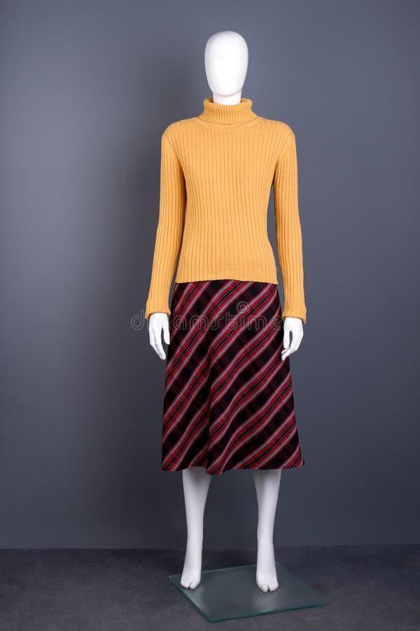 Свитер и юбка на манекене стоковое изображение