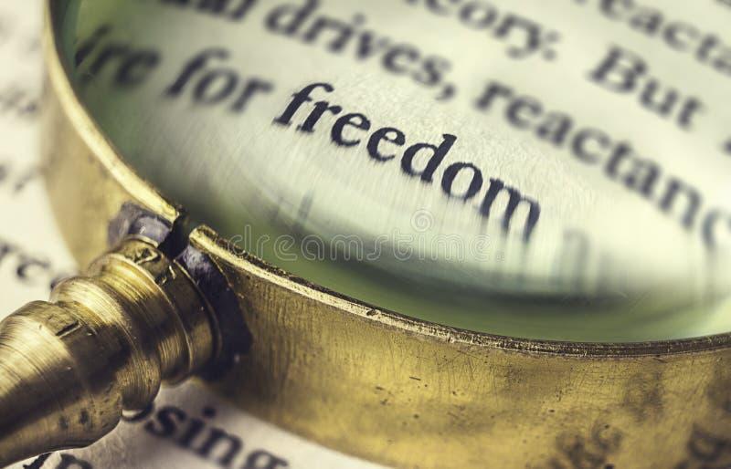 Свобода слова прочитанная через лупу стоковое фото rf