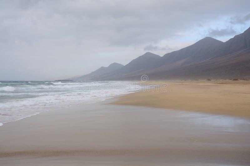 свободный полет fuerteventura пляжа западный стоковые фотографии rf