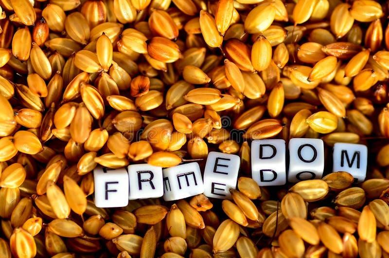 Свобода на органических зернах риса стоковое изображение rf