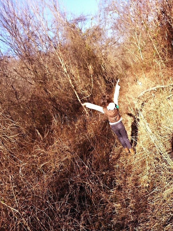 Свобода танца стоковые изображения