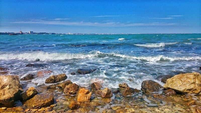 Свободный полет Чёрного моря стоковое фото rf