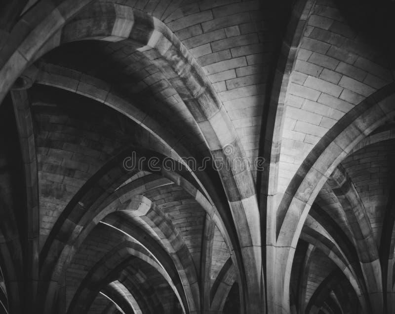 Своды монастыря университета стоковое фото rf