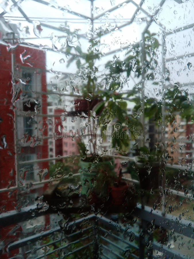 Свое идя дождь весь день стоковые изображения rf