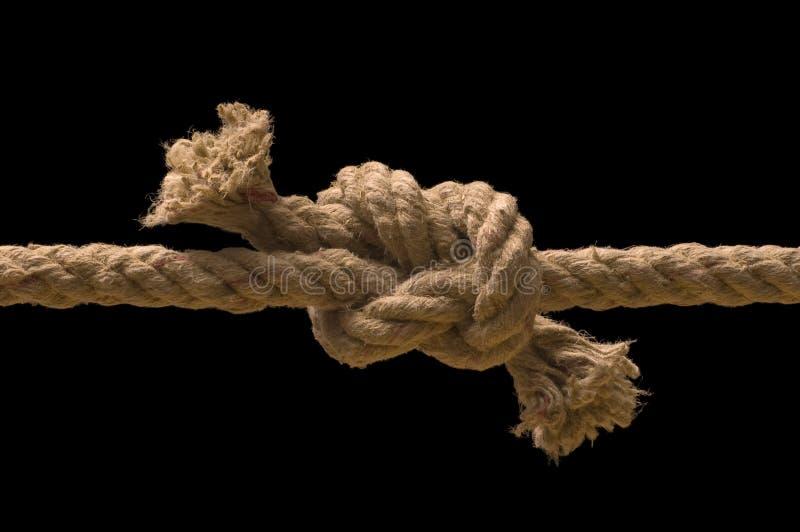 связанная веревочка узла стоковые фото