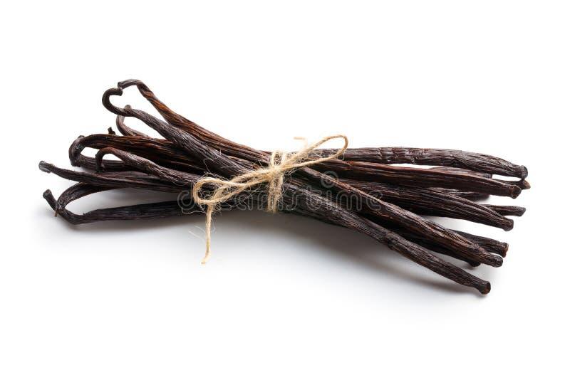 Связанные стручки ванили стоковые фотографии rf