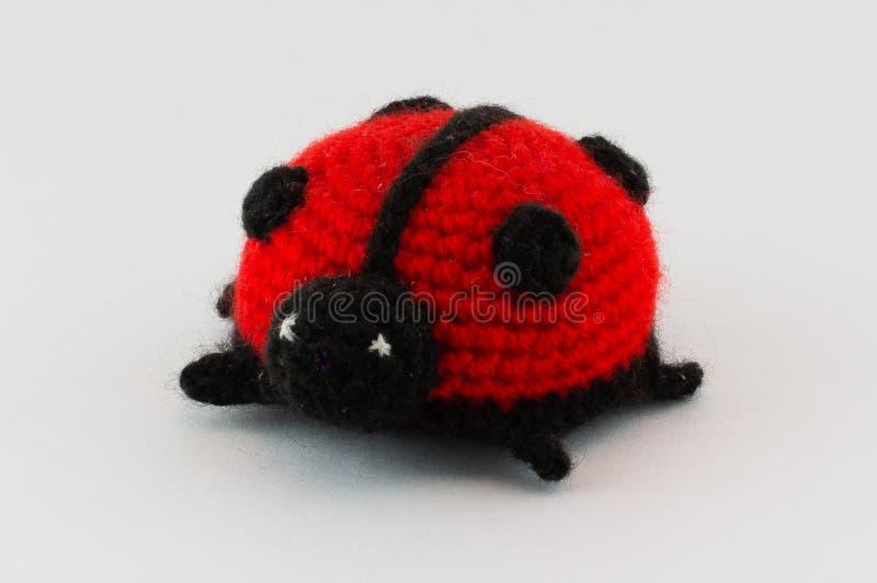 Связанный ladybug игрушки стоковое изображение rf