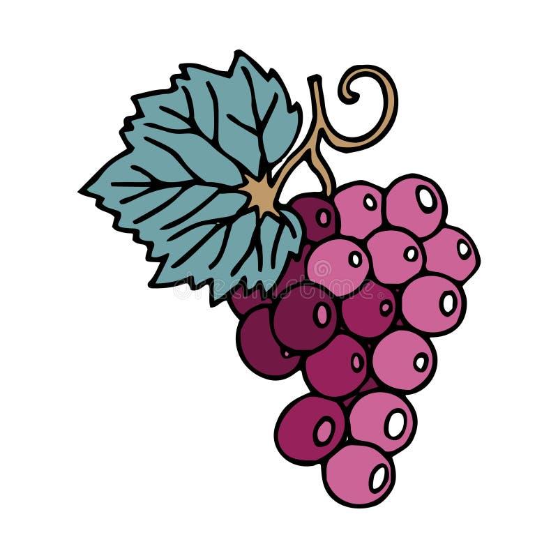 Связка винограда в стиле doodle с ходом иллюстрация штока