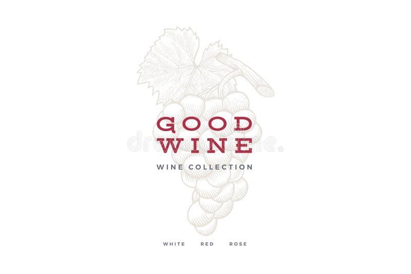 Связка винограда на светлой предпосылке Выгравированный стиль Шаблон логотипа для магазина вина, дизайна карточки вина, меню рест иллюстрация штока