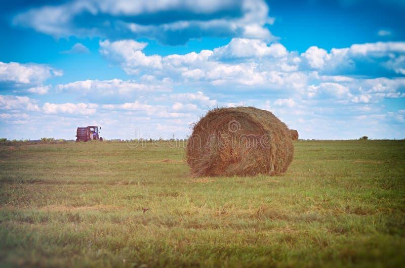 Связка сена на поле стоковые фотографии rf