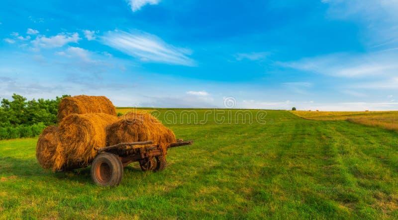 Связки земледелия сельской местности сена стоковое фото rf