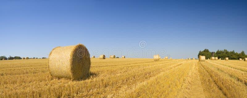 Связки сена, идилличный сельский ландшафт стоковая фотография rf