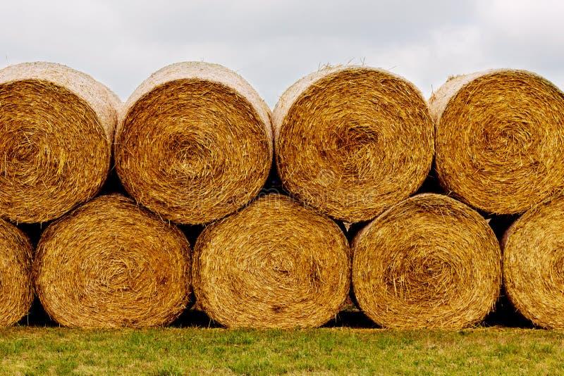Связки сена на поле после сбора стоковое изображение rf