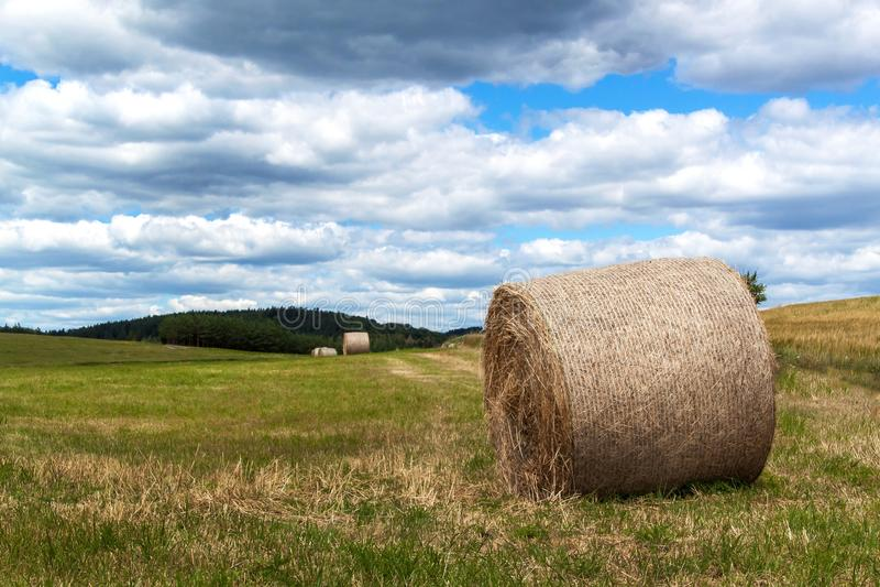 Связки соломы на поле в чехии Сбор сена заволакивает небо аграрная ферма стоковое фото