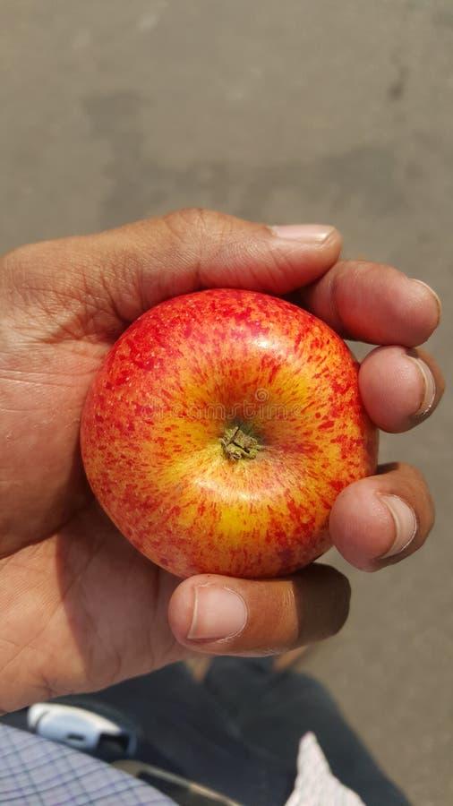 Святое яблоко! стоковые изображения