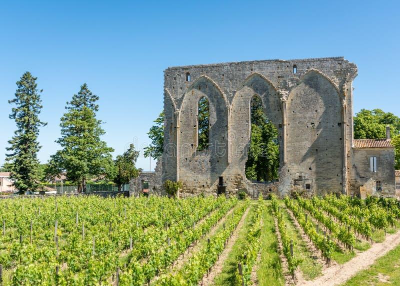Святой Emilion, Жиронда, Франция Виноградники и руины средневековой деревни стоковая фотография rf