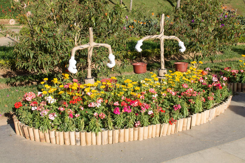 святой petersburg России цветка кровати близкое вверх стоковая фотография rf