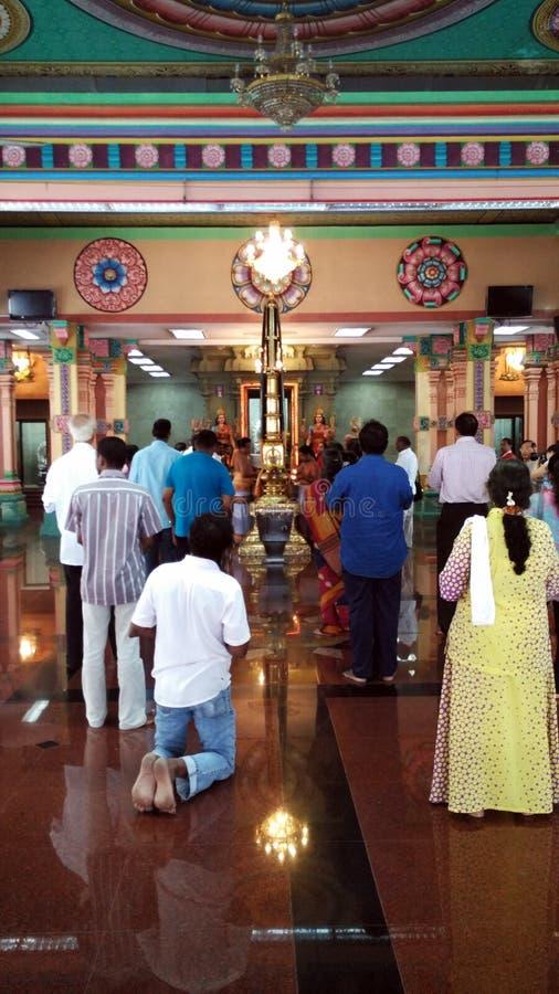 Святые индийские молитвы молят в индусском виске стоковое изображение