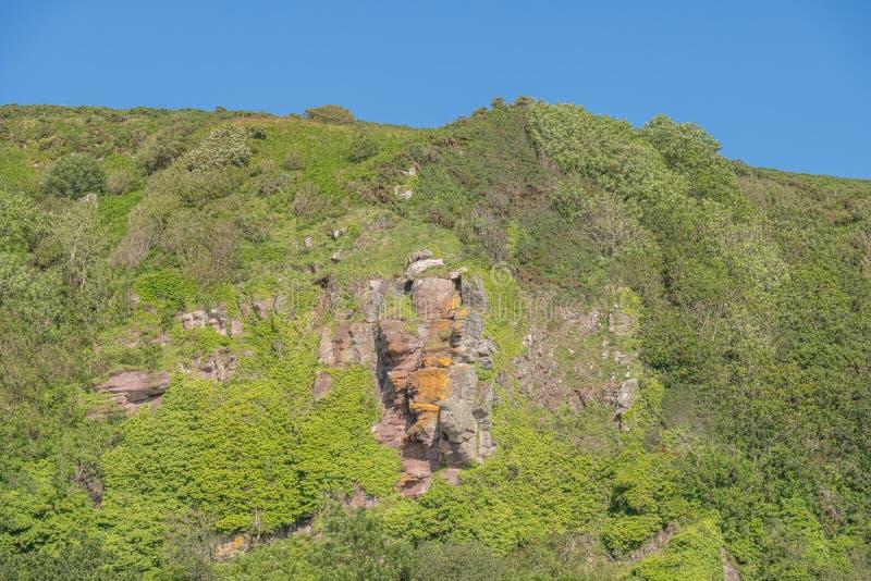 Святые пещеры или Hawking пещера Craig расположили над земным Leval в Portencross на летнем солнцестоянии в Шотландии стоковое изображение rf
