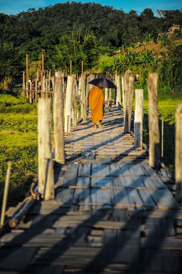 Священник и собака идут на малый деревянный мост стоковая фотография rf