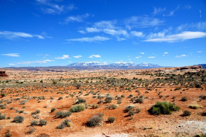 сгабривает национальный парк стоковая фотография