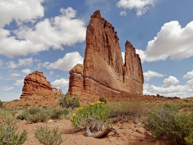 сгабривает национальный парк стоковые изображения