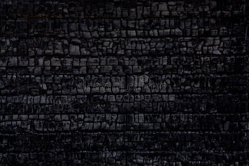 сгорели древесина стоковые фотографии rf