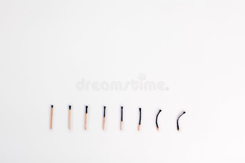 8 сгорели к различным градусам спичек в ряд на белом backgr стоковые фотографии rf
