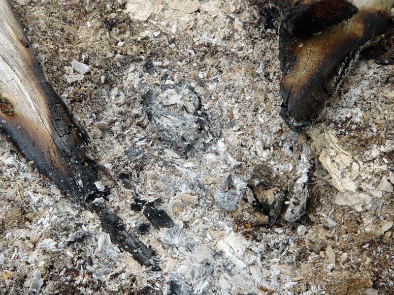 сгорели пожар вне Стоковая Фотография