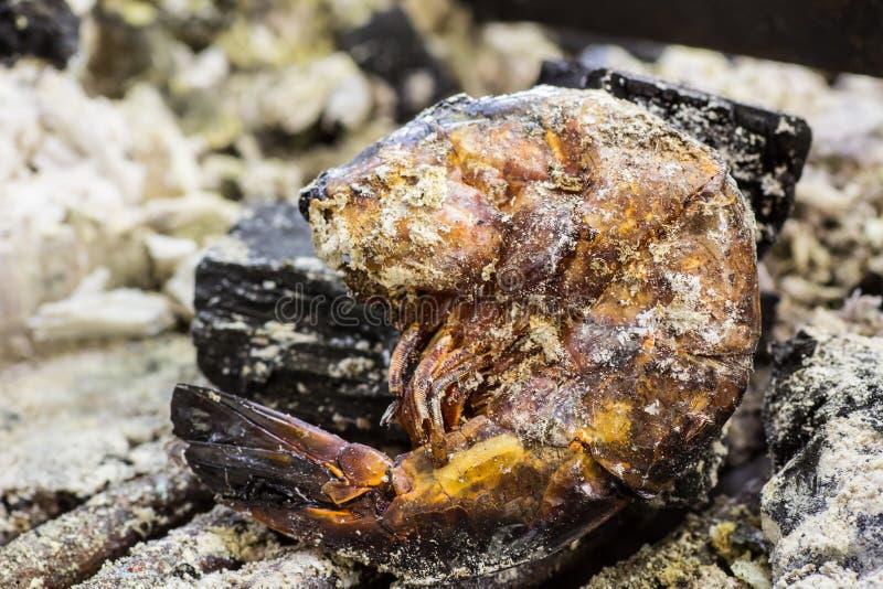 Сгорели креветка, который стоковые фотографии rf