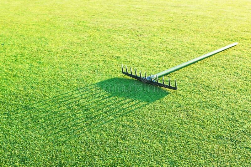 Сгребалка на зеленой траве для гольфа. стоковые изображения rf